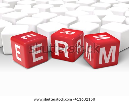 3d illustration dice with word ERM enterprise risk management on white background