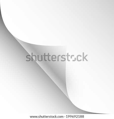 3d vector blank sheet of paper with page curl and shadow - stock vector