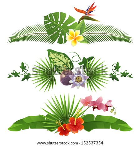 3 decorative tropical borders from leaves and flowers - stock vector