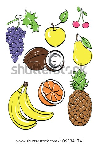 different fruits set isolated on white background .vector illustration