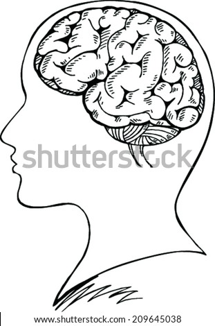 doodle of head and brain vector illustration - stock vector