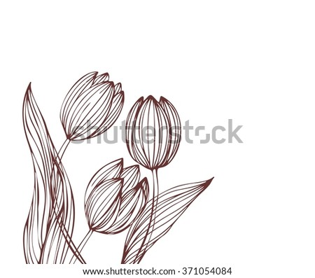 Drawing vector graphics with floral pattern for design. Floral flower natural design. Graphic, sketch drawing.  tulip.