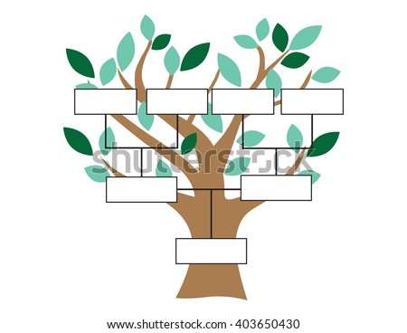 family tree chart stock images royaltyfree images