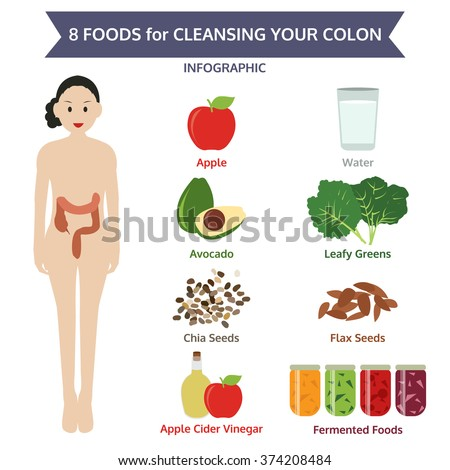 8 foods for cleansing your colon, info graphic food, vector illustration - stock vector