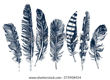 7 hand drawn feathers on white background - stock vector