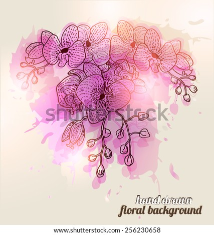 Hand Drawn Orchid Flowers - stock vector