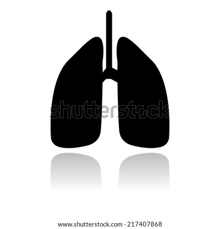 Human lung. Medical background. Health care with shadow