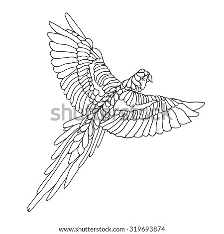 Parrot Border Coloring Page