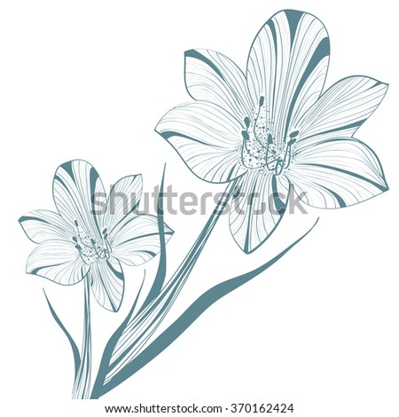 One colored Abstract Vintage Lily Flower - stock vector