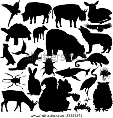 23 pieces of detailed vectoral wild animals silhouettes.