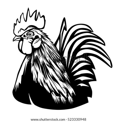 Rooster vector illustration. Graphics, handmade drawing Rooster. Vintage engraving style.  Isolated chicken bird on a white.