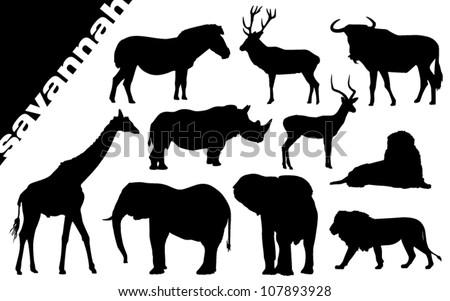 savanna silhouette - stock vector