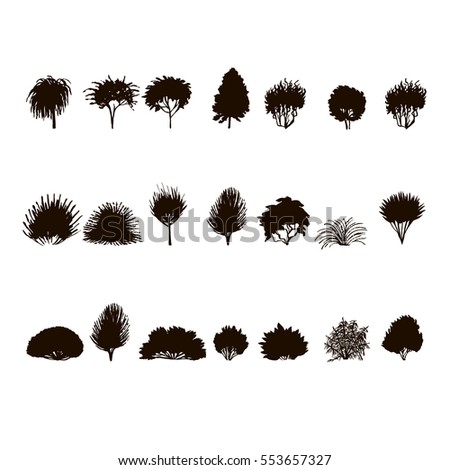 set of Trees and bushes silhouette  isolated on white backgorund. dendrology collection. graphic template. vector illustration..