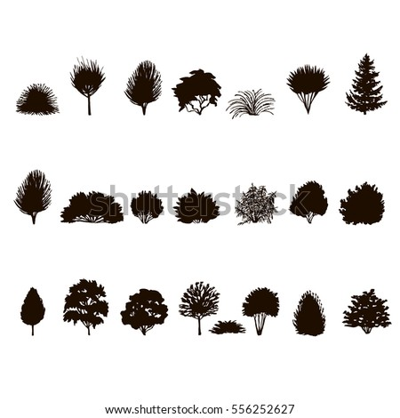 set of Trees and bushes silhouette  isolated on white backgorund. dendrology collection. graphic template. vector illustration.