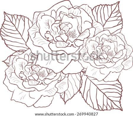 silhouette of rose with leaves. Vector illustration.