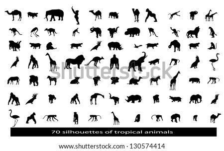 70 silhouettes of the African animals - stock vector