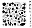 Sketch of floral elements for your design - stock vector