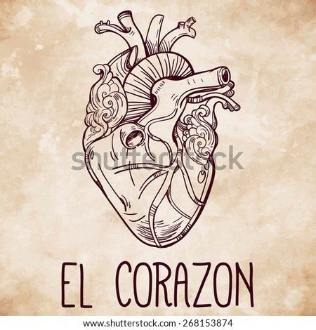 Sketched hand drawn line art ornate decorative human heart. Vintage style. Beautiful tattoo template.Isolated vector illustration. Tattoo artist design element. T-shirt print. Aged paper background. - stock vector