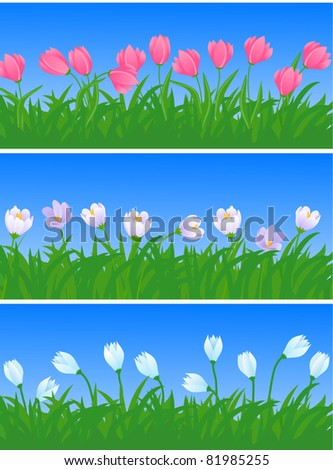 spring flowers and grass illustration