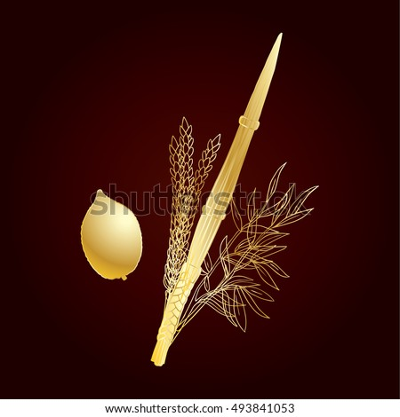 Sukkot Holiday. Sukkot greeting card. Traditional four species for Jewish Holiday Sukkot & Sukkot Stock Images Royalty-Free Images u0026 Vectors | Shutterstock