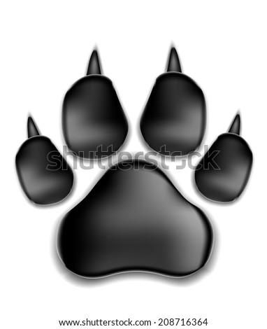 vector illustration. black pads of a cat with claws. traces of a kitten