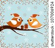 A beautiful Christmas card with the birds - stock