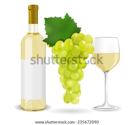 A bottle of white wine, grapes and a glass of wine - vector composition