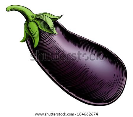 A brinjal eggplant aubergine vintage woodcut illustration in a vintage style - stock vector