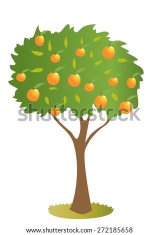 A cartoon peach tree - stock vector