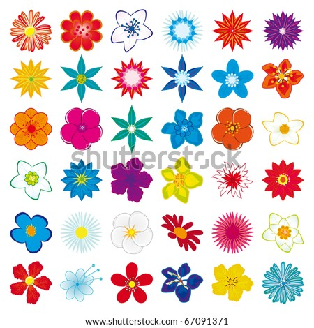 A collection of flowers for the design. Vector illustration - stock vector