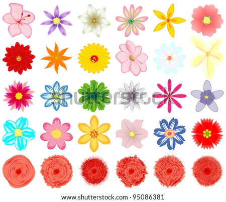 A collection of vector  flowers for the design.