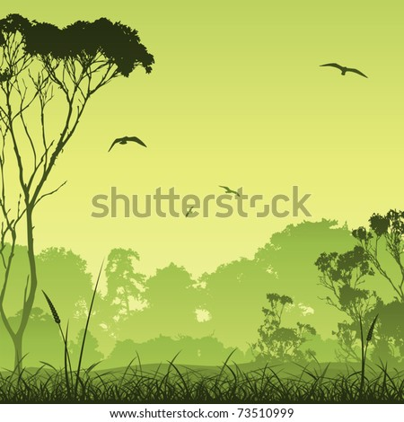 A Country Meadow Landscape with Trees and Birds