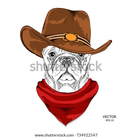 Cowboy Stock Images Royalty Free Images Amp Vectors