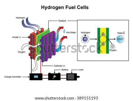 Fuel Cell Device That Converts Chemical Stock Photo Photo Vector