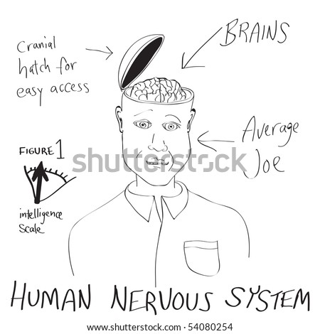 A funny cartoon diagram of a man with his head opening up revealing his brain.