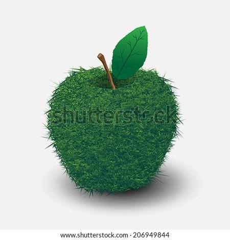 a grass apple - stock vector