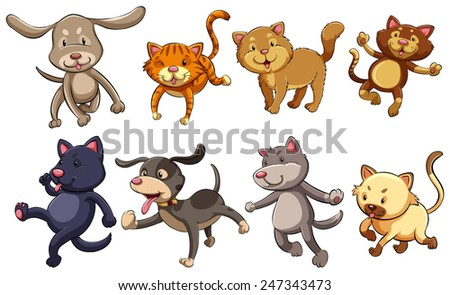 A group of playful cats and dogs on a white background