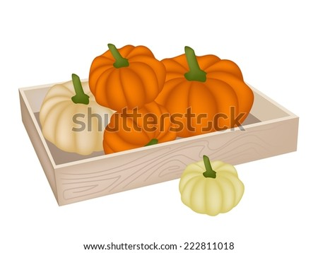 A Heap of Fresh Pumpkins in Wooden Container, Pumpkin Is One of Vitamin Nutrients to Improve Nutrient Intake and Health Benefits.  - stock vector