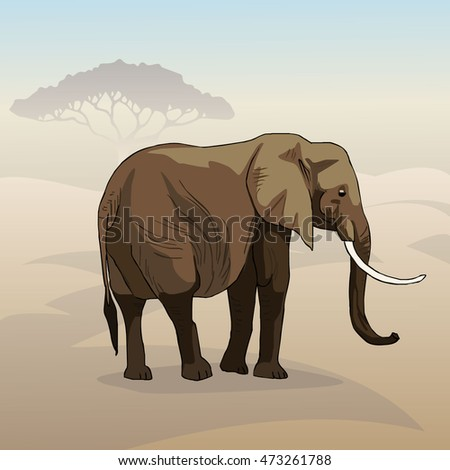 A huge elephant with a long trunk and big tusks walking on the savannah. The largest animal in the world. Realistic characters, stylized background. Vector.
