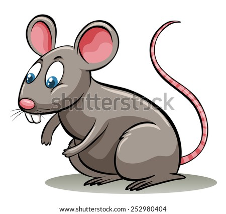 Rats And Mice Stock Ph...