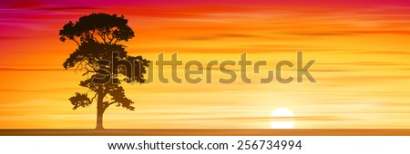 A Lone Tree with Misty Sunset, Sunrise. Vector EPS 10. - stock vector
