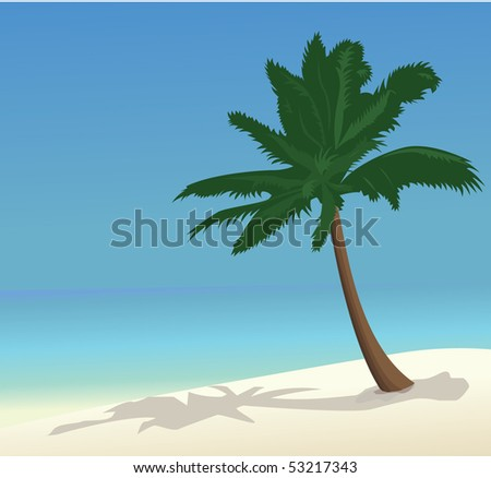 A Palm On An Empty Beach And A Sea View