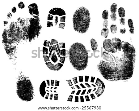 A Selection of highly detailed vector hand, finger feet and shoeprints. - stock vector