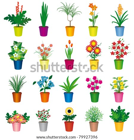 A set of colorful pots of flowers. Vector illustration - stock vector