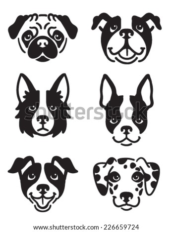 , English Bulldog, Border Collie, Boston Terrier, Jack Russel Terrier ...