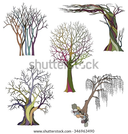A set of five abstract bare trees with detailed branches and twigs. Vector color illustration, isolated on white background.