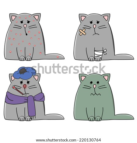 a set of four cats with different illnesses - stock vector
