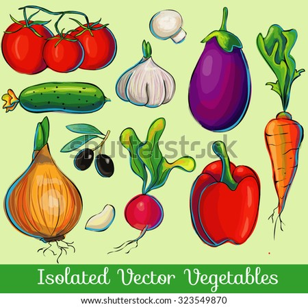 A set of hand drawn isolated vector vegetables, colorful illustration, fresh vegetarian meal.