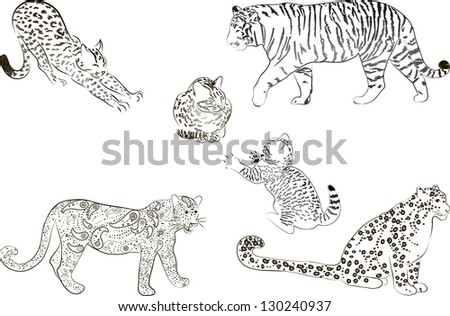 A set of  large predatory cat. Vector illustration.
