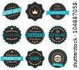 A set of nine vintage labels isolated on white. - stock vector